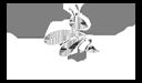 Cainetwork Creative & Web Studio | Páginas Web Profesionales
